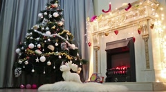 Beautiful decorated by toys and garlands christmas tree is standing Arkistovideo