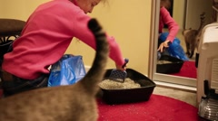 Girl leveling filler cat in toilet next to cat in hallway. Stock Footage
