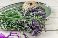 Bouquet of lavender. Spa composition. - stock photo
