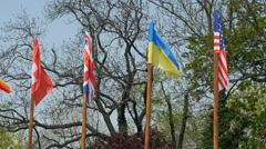 Here we can see flag Switzerland will, England, Ukraine, USA and others. Stock Footage