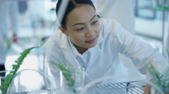 4K Research scientist studying plant samples in lab with colleague - stock footage