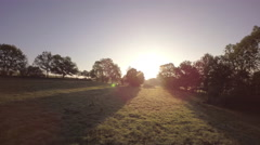 Aerial view moving forward over green fields Stock Footage