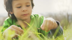 Child is playing with a ladybug lay down on grass outdoor in sunny day Stock Footage