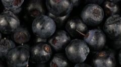 Fresh, ripe blueberries rotate, wild berry. Bilberry clockwise rotation Stock Footage