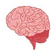 Human brain icon Stock Illustration