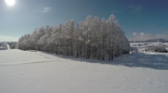 Trees covered with hoar frost in Ashibetsu Stock Footage