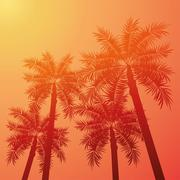 Palm tree  icon. Summer design. Vector graphic - stock illustration