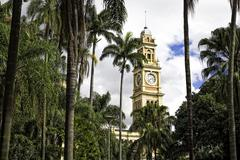 View of Luz railway station clock tower and palms, Sao Paulo, Brazil - stock photo