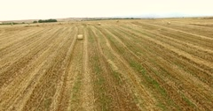 haystacks after the wheat harvest Stock Footage