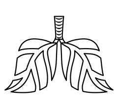 leaves lungs icon. Think green concept. Vector graphic - stock illustration