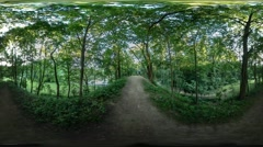 360Vr Video Footpath Alley in Park Green Juvenile Trees Shadow Under Trees - stock footage