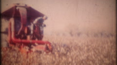 3394 the cotton harvest on southern plantation-vintage film home movie Stock Footage