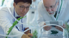 4K Research scientists checking plant samples in lab & having discussion - stock footage
