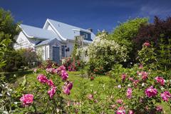 House with garden full of flowers, spring - stock photo