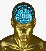Illustration of the brain inside the skull of an adult man - stock illustration