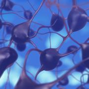 3D illustration of neurons in the brain Stock Illustration