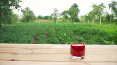 strawberry smoothie put the mint leaves and pour the strawberries - stock footage