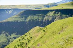 Leafy hills in the sunshine, on migration in Cathedral Peak in the Drakensberg, - stock photo