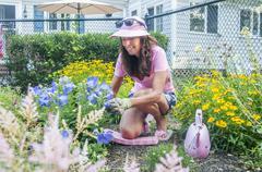 Woman pruning flowers in garden Stock Photos