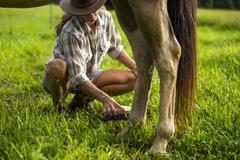 Mature woman tending to horse, low section - stock photo