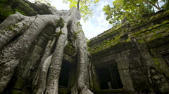 Ta prohm temple Unesco world heritage site dolly - stock footage