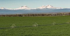Three Sisters Stands Majestic Oregon Cascade Mountain Range - stock photo