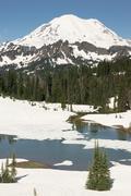 Tipsoo Lake Naches Peak Loop Mt Rainier Cascade Mountain Range Kuvituskuvat