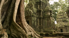 Ta prohm temple Unesco world heritage site dolly Stock Footage