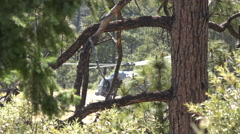 4K UHD blackhawk rises-hovers-takes off behind trees w sound Stock Footage
