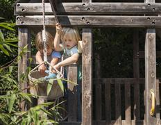 Two young boys playing in tree house - stock photo