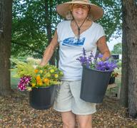Portrait of senior female farmer carrying buckets of cut flowers - stock photo