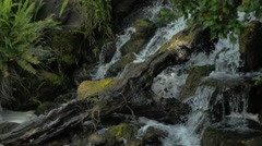 Wild River - Exellent Transition Shot Stock Footage