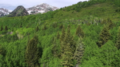 Aerial panning view of forest and mountain top. Stock Footage