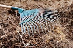 Yard work, preparation soil in garden with rake shoveling dry grass Stock Photos