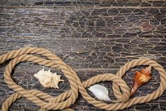 sea shells and rope on old dark boards - stock photo