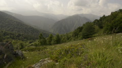 Mountain fiels in summer day  dolly Stock Footage