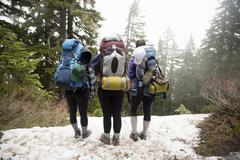 Hikers walking across forest, Lake Blanco, Washington, USA Stock Photos
