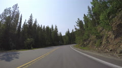 Car driving through alpine forest on Mount Evans-POV point of view. Stock Footage