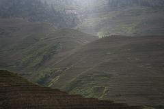 Elevated view of Longsheng terraced ricefields, Guangxi Zhuang, China - stock photo