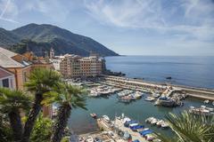 Elevated view of harbor and fishing boats, Camogli, Liguria, Italy - stock photo