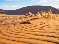 Wave patterns in the sand at the Dune 45, Sossusvlei, Namibia Stock Photos