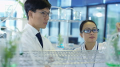 4K Scientific research team analyzing plant samples in laboratory Stock Footage