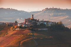 Elevated view of vineyards and hill town, Langhe, Piedmont Italy Stock Photos