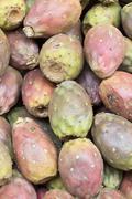 Cactus fruits (Opuntia ficus-indica, Indian fig opuntia, fig,), tuna. - stock photo