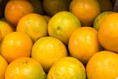 Sweet oranges fruits( mineola) on a market in Arequipa, Peru.  Stock Photos