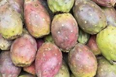 Cactus fruits (Opuntia ficus-indica, Indian fig opuntia, fig,), tuna. Stock Photos