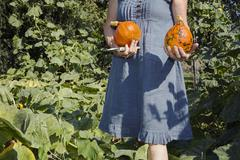 Mature woman gardening, holding squashes from garden, mid section - stock photo