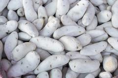 Chuño freeze-dried potato product traditionally made by Quechua and Aymara commu - stock photo