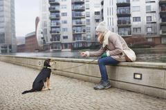 Mid adult woman and training her dog on city riverside Stock Photos