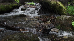 View walking up creek with green mossy banks. Stock Footage